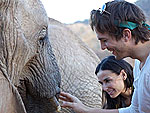 Stars Get Wild on Safari! | Ashton Kutcher, Demi Moore