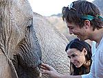 Stars Get Wild on Safari! | Ashton Kutcher, Demi Moore