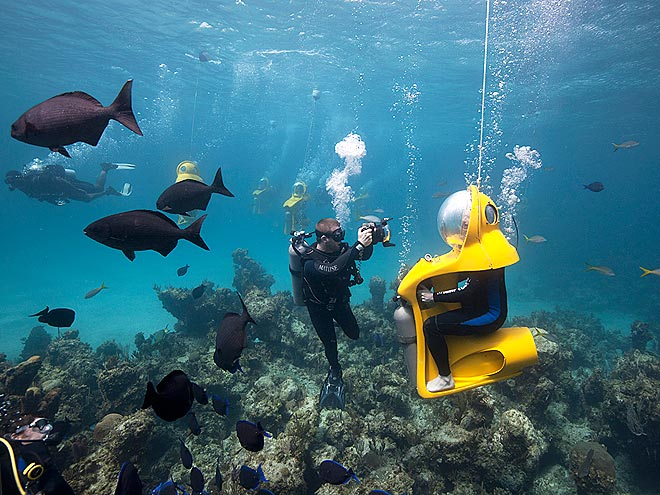 SCUBA DOO photo | Andy Samberg