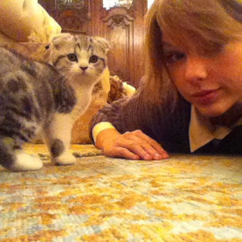 LOVE STORY  photo | Taylor Swift