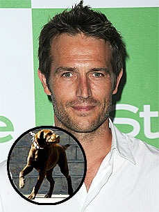 Michael Vartan&#39;s Dog Loves His Fianc&#233;e&#39;s Pooch Like a &#39;Sister&#39;