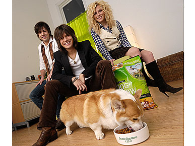 The Band Perry Has An &#39;Extended Family&#39; &#8211; of Furry Brothers and Sisters!