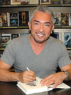 how to get help from cesar millan