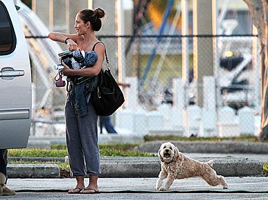 Minka Kelly's Pooch Is a Downward-Facing Dog