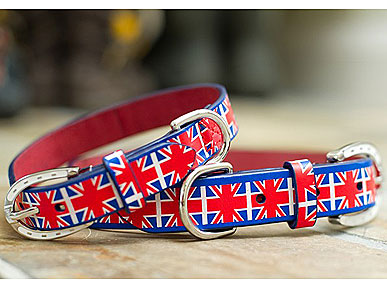 Say Woof to Will & Kate With Mascot's Union Jack Collar