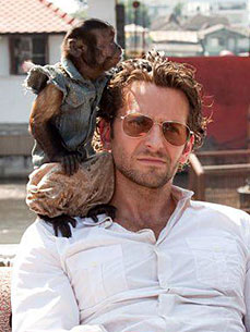The Water Bowl: Is the Monkey from &#39;Hangover 2&#39; Addicted to Cigarettes?