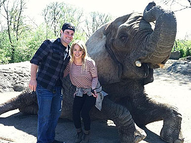 Spotted: Hilary Duff and Mike Comrie Get Friendly with an Elephant