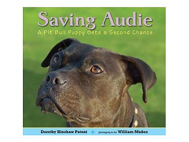 'Saving Audie' Explains Dogfighting to Younger Audiences