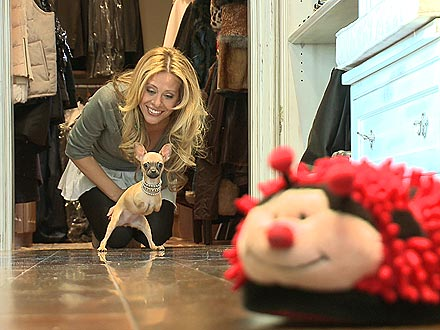 Real Housewives of New Jersey's Dina Manzo Adopts Two-Legged Dog
