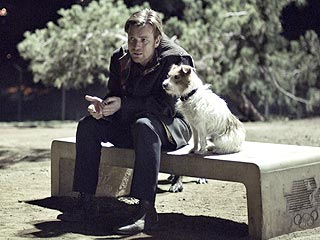 Ewan McGregor Falls in Love with a Co-Star (on Four Legs)| Stars and Pets, Dogs, Ewan McGregor