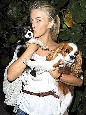 Tom Cruise Is Fan of Julianne Hough's Puppy