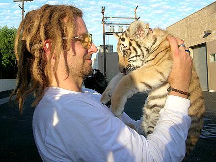 Bradley Cooper with Dreadlocks – and a Tiger!   Bradley Cooper