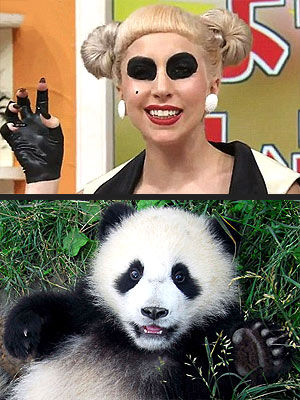Lady Gaga in Panda Makeup