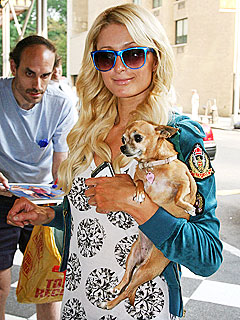 Paris Hilton Reveals She Has 17 Pets