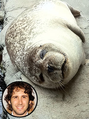 Josh Groban Visits New England Aquarium