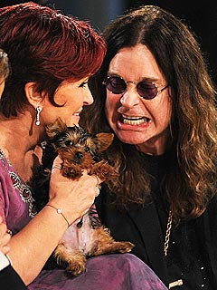 Ozzy Osbourne Shells Out $10,000 for a Yorkie | Ozzy Osbourne