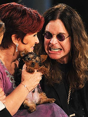 Ozzy Osbourne, Sharon Osbourne Pay $10,000 for a Yorkie
