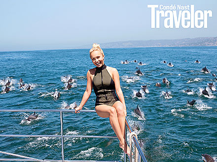 Hayden Panettiere, Dolphin and Whale Activism
