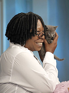 Whoopi Adopts N.Y.C Kitten Who Survived Bridge Toss | Whoopi Goldberg