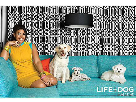 Jordin Sparks: 'My Dogs Make Me a Better Person'| Stars and Pets, Jordin Sparks