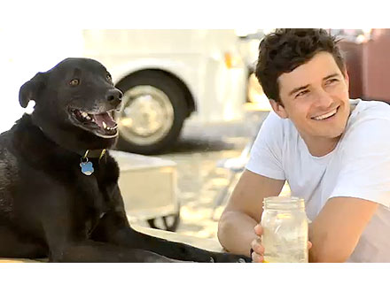 Orlando Bloom, Dog Sidi Go Everywhere Together