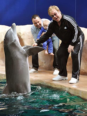 Face-to-Flipper! Elton John's Son Zachary Meets a Dolphin