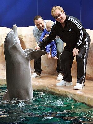 Face-to-Flipper! Elton John's Son Zachary Meets a Dolphin