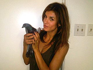 How Coo-l! Elisabetta Canalis Helps an Injured Pigeon | Elisabetta Canalis