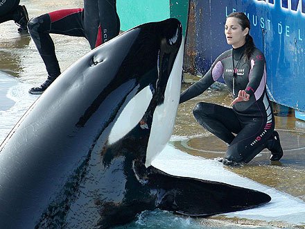 Marion Cotillard with Killer Whale: Photo