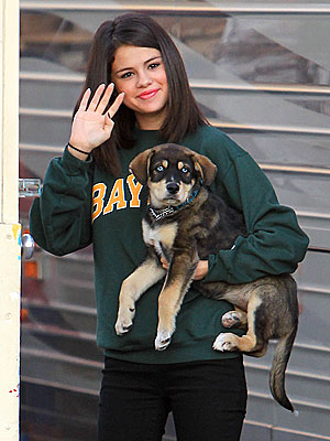More Than Puppy Love: Selena Gomez Adopts a Dog – with Justin Bieber!| Stars and Pets, Dogs, Justin Bieber, Selena Gomez