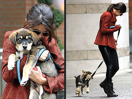 Selena Gomez and New Dog Baylor: Photos