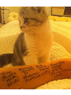 CMA Awards 2011: Taylor Swift, Entertainer of the Year, Writes Reminders on Arm