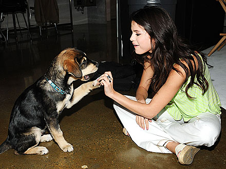 Mwah! Selena Gomez Plants a Wet One on Her Pooch| Stars and Pets, Dogs, Selena Gomez