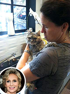 Jane Lynch's Cat Greta Dies | Jane Lynch