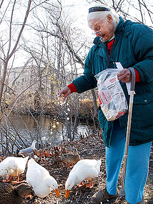 80-Year-Old Woman Faces Criminal Charges for Feeding Ducks
