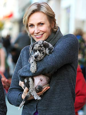 Jane Lynch Adopts Dog