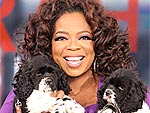 Oprah's Four-Legged Kids | Oprah Winfrey