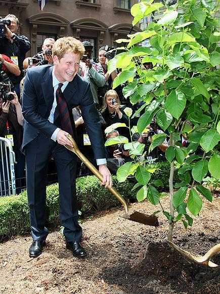 6. HE'S GREEN  photo | Prince Harry