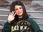 Welcome to Hollywood! New Star Pets of 2011 | Selena Gomez
