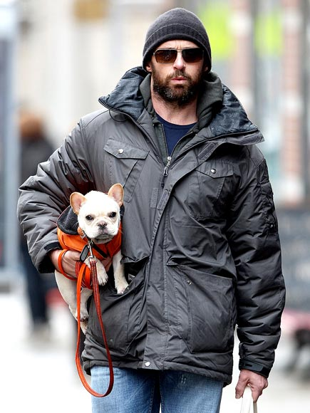 DOGGY DUTY photo | Hugh Jackman