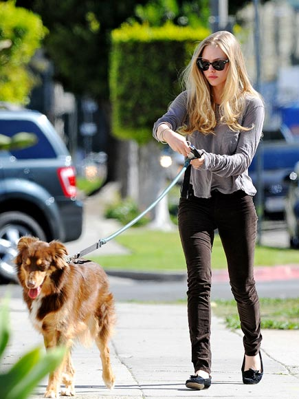 GUIDE DOG photo | Amanda Seyfried