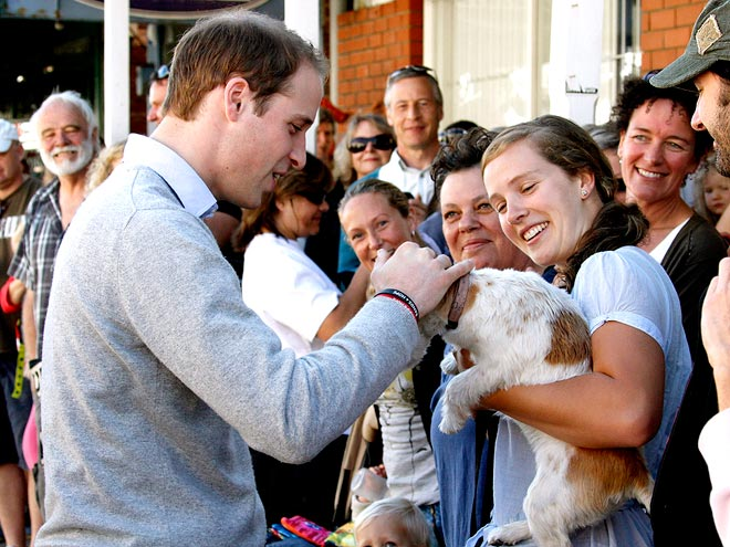 TENDER TOUCH photo | Prince William