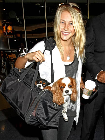 DOUBLE BAGGED photo | Julianne Hough