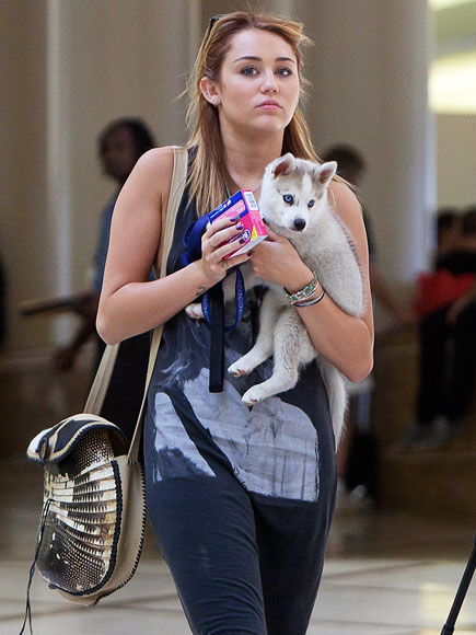 TRAVEL BUDDY photo | Miley Cyrus
