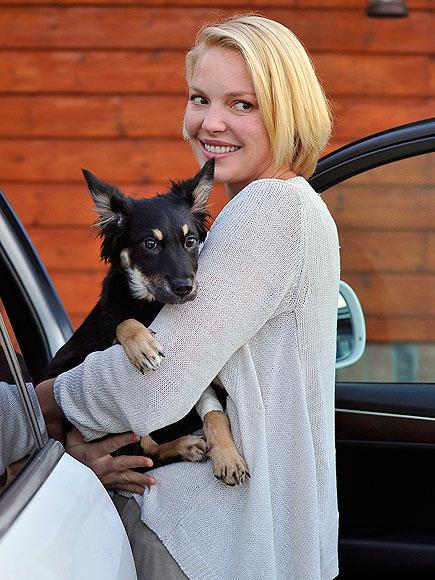 A DOG'S LIFE  photo | Katherine Heigl