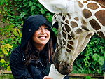 Fun! Rachael Ray Feeds a Giraffe