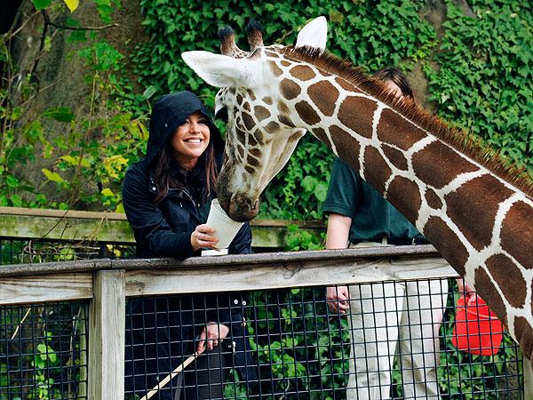 Rachael Ray Feeds a Giraffe