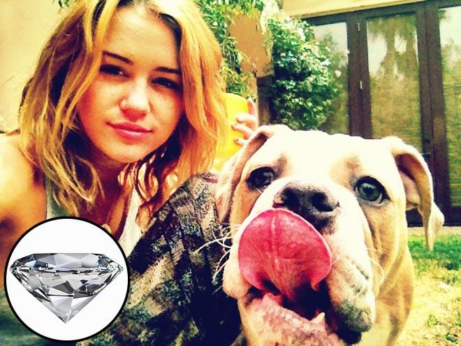 miley-cyrus-660 jpg Miley Cyrus