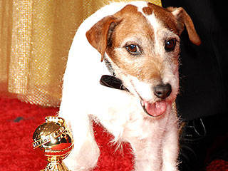 Uggie Takes Home Top Prize at Pawscars