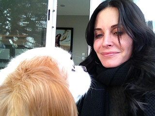 Courteney Cox Tweets Intimate Details of Life with Dog | Courteney Cox